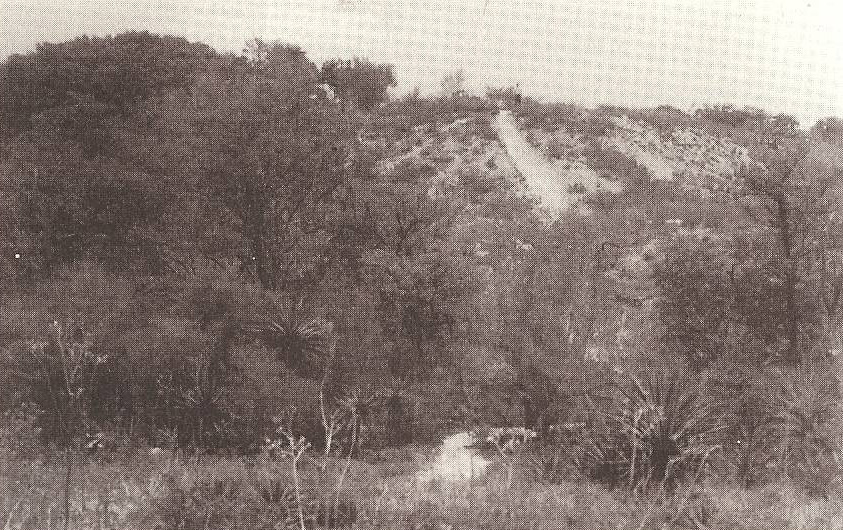 A black and white photo of the view from the top of one of the mounds.