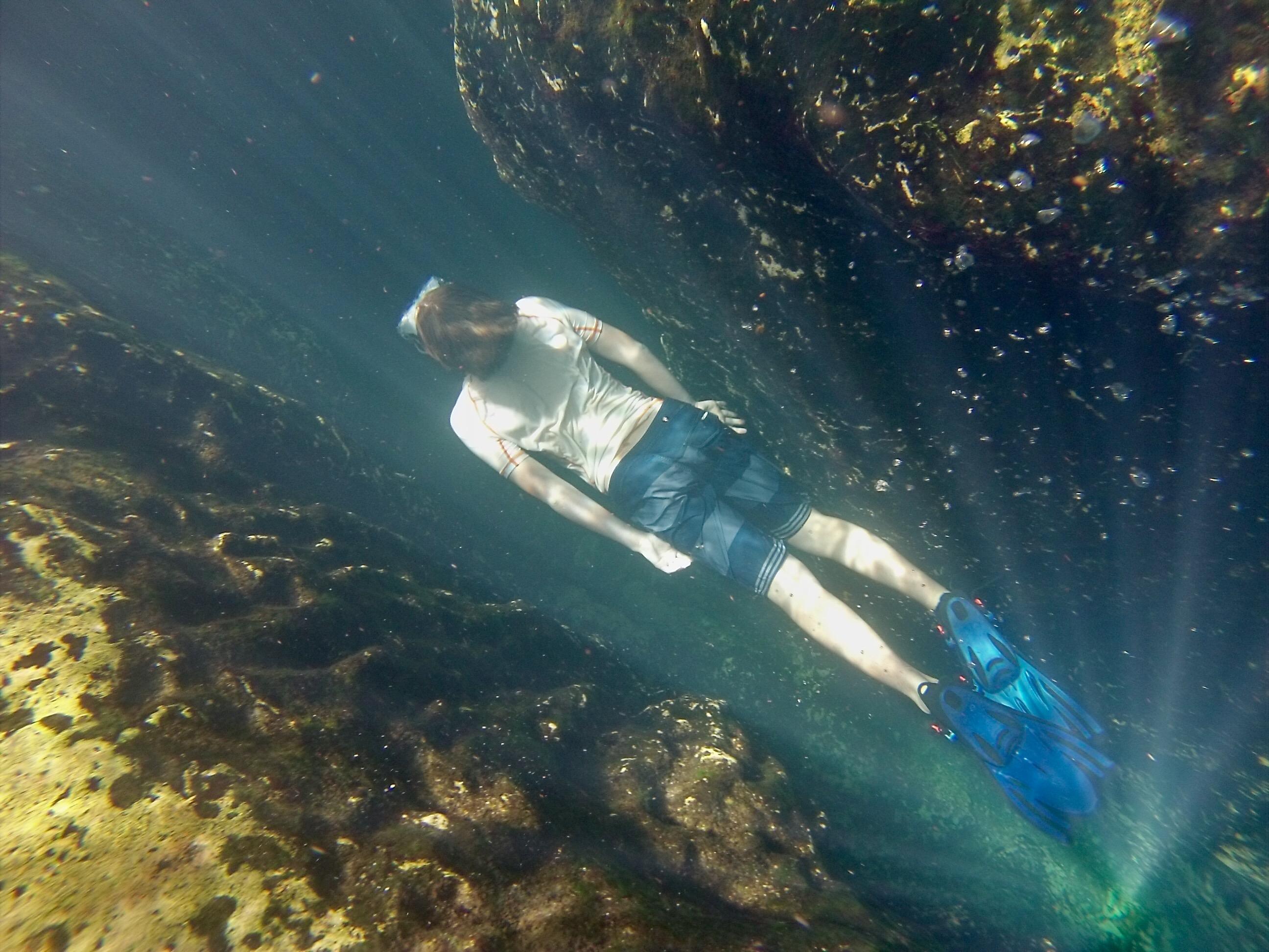 Swimming at Wekiwa Springs | Florida State Parks