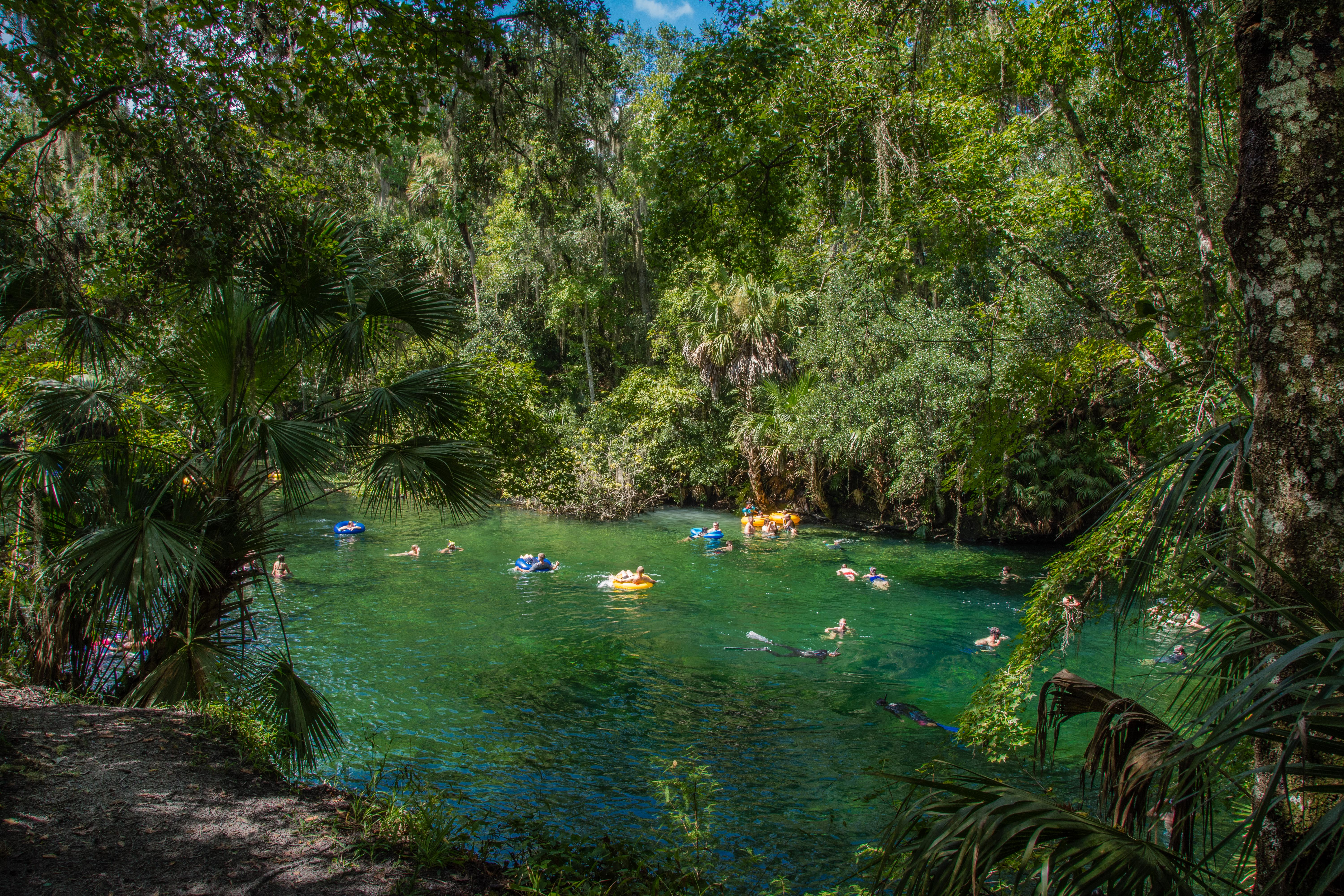 Tubers and snorkelers at Blue Spring