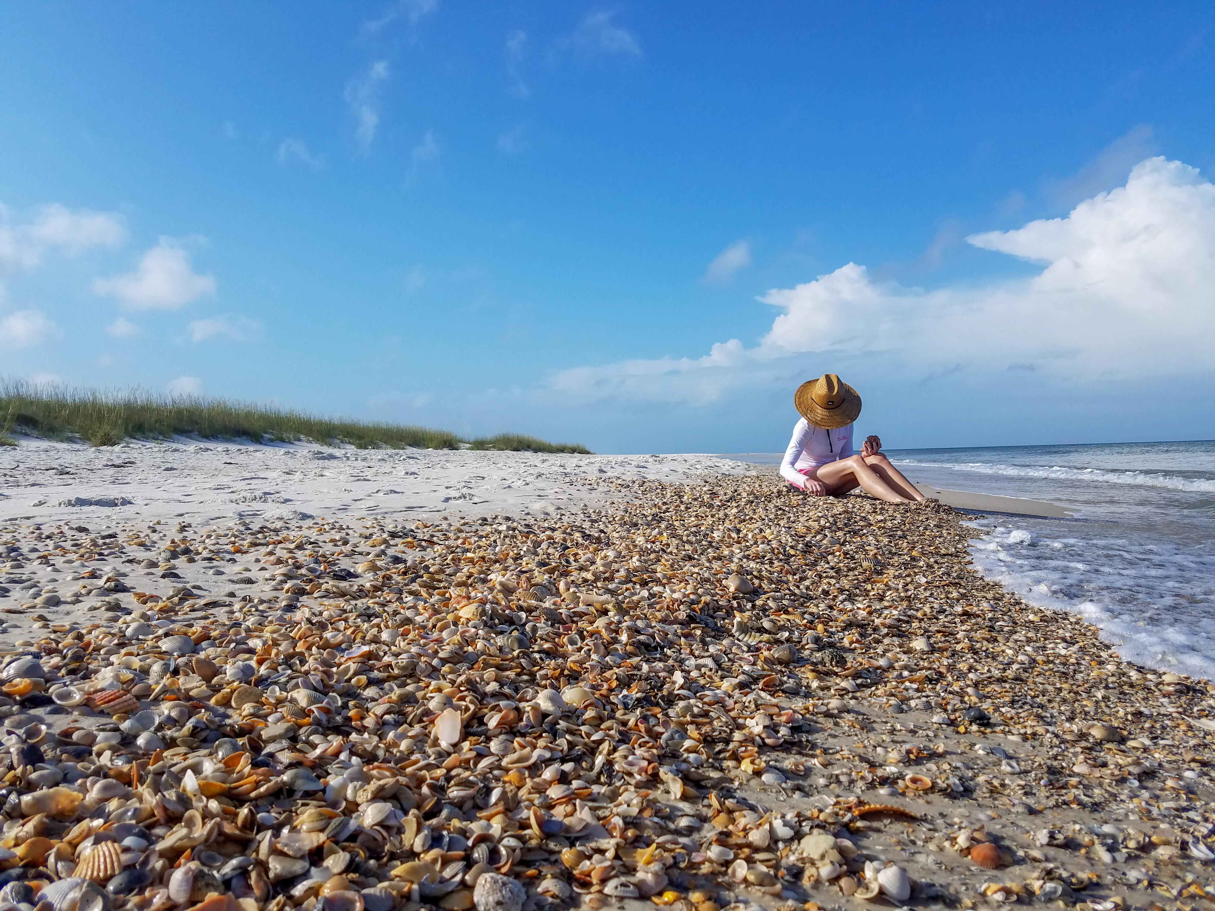 Beaches At St Joseph Florida State Parks