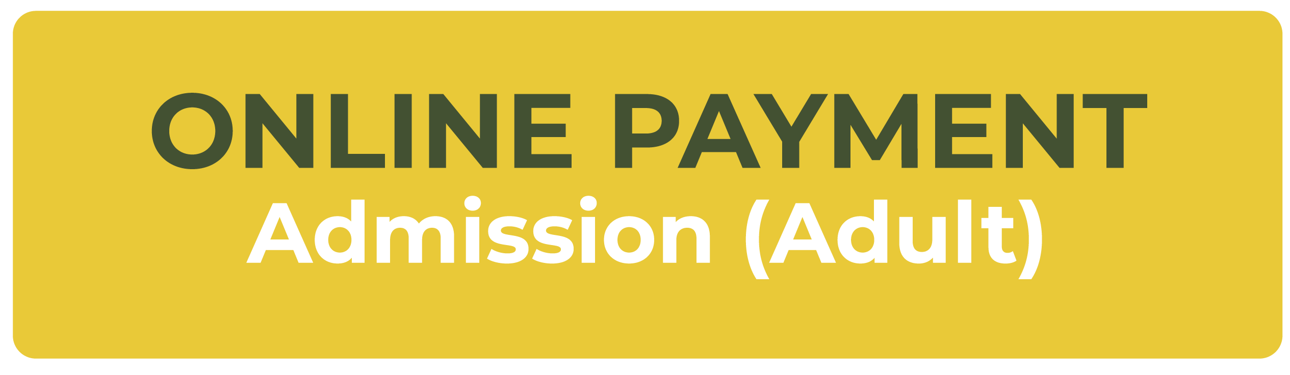 Online Payment Admission (Adult)