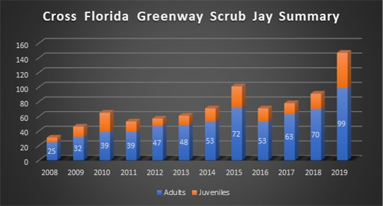 Graph demonstrates the increase of the Florida scrub-jay population between 2009 and 2019.