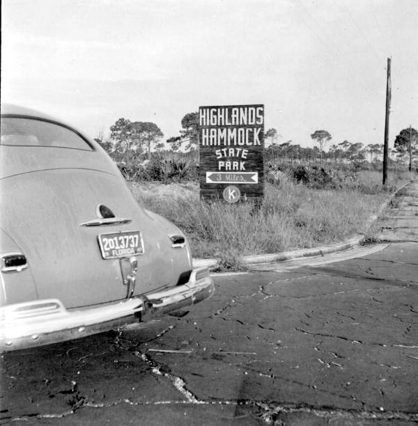 Car by the entrance to Highlands Hammock State Park, circa 1947