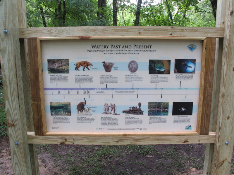a panel in the woods has a history timeline with images.