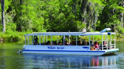 A view of the boat on the water at Wakulla Springs.