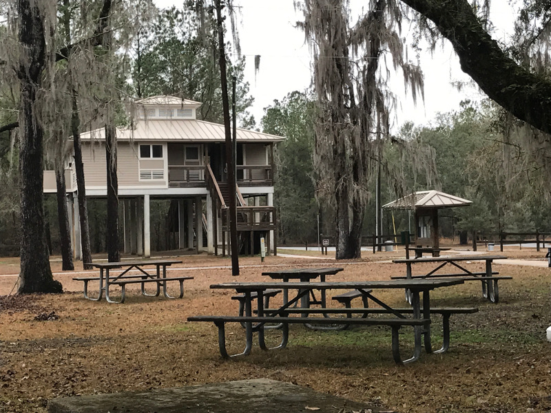 building stands on stilts high above a picnic area with trees draped in spanish moss.