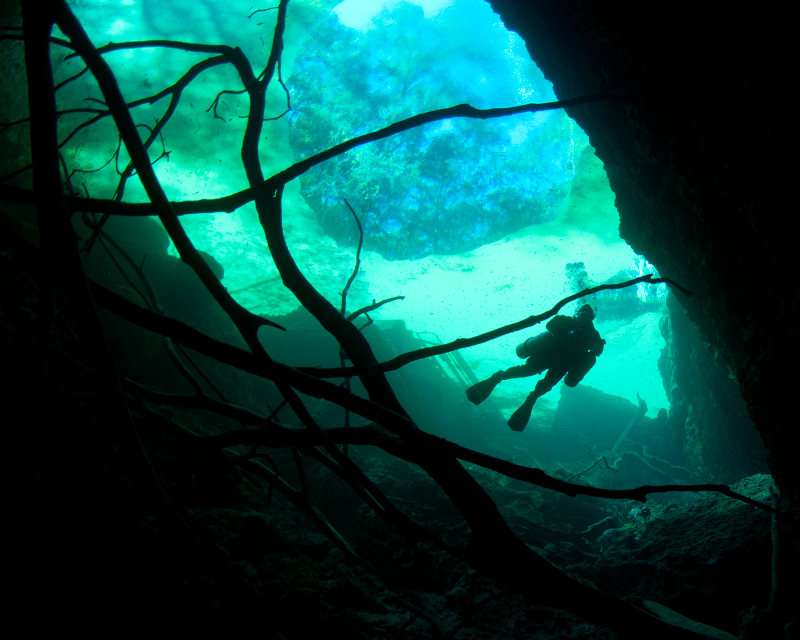 a single descending diver is silhouetted against the blue water.