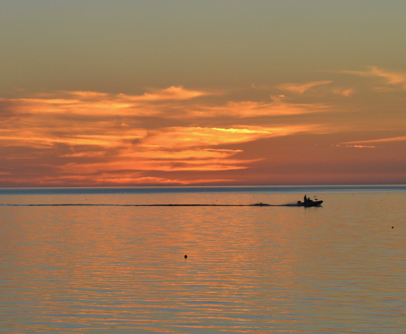 Image of a fishing boat outlined against a beautiful orange sunrise at crystal river preserve state park.