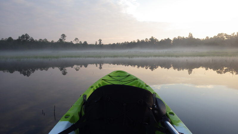 a green kayak floats atop a foggy lake surrounded by trees at dawn