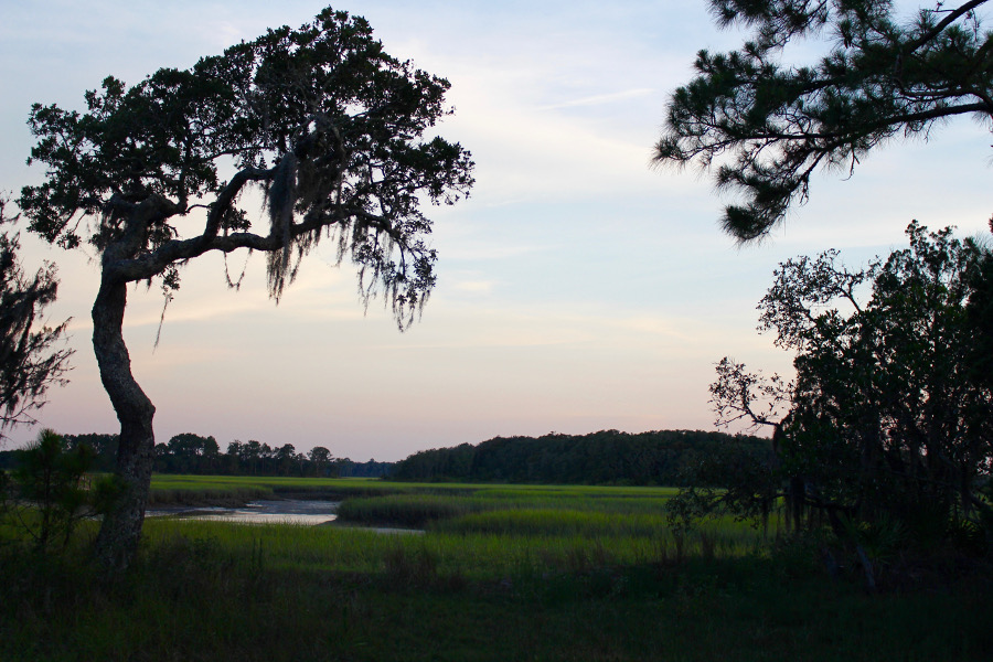 Image of a creek and trees draped in Spanish moss at twilight in Little Talbot Island State Park.