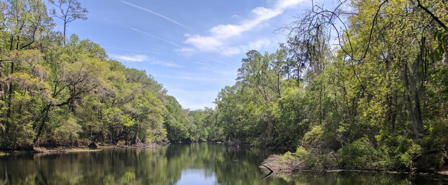 A view of the Santa Fe River at River Rise Preserve State Park.