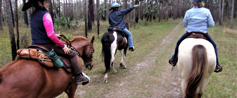 Horseback Riding at Colt Creek   Florida State Parks