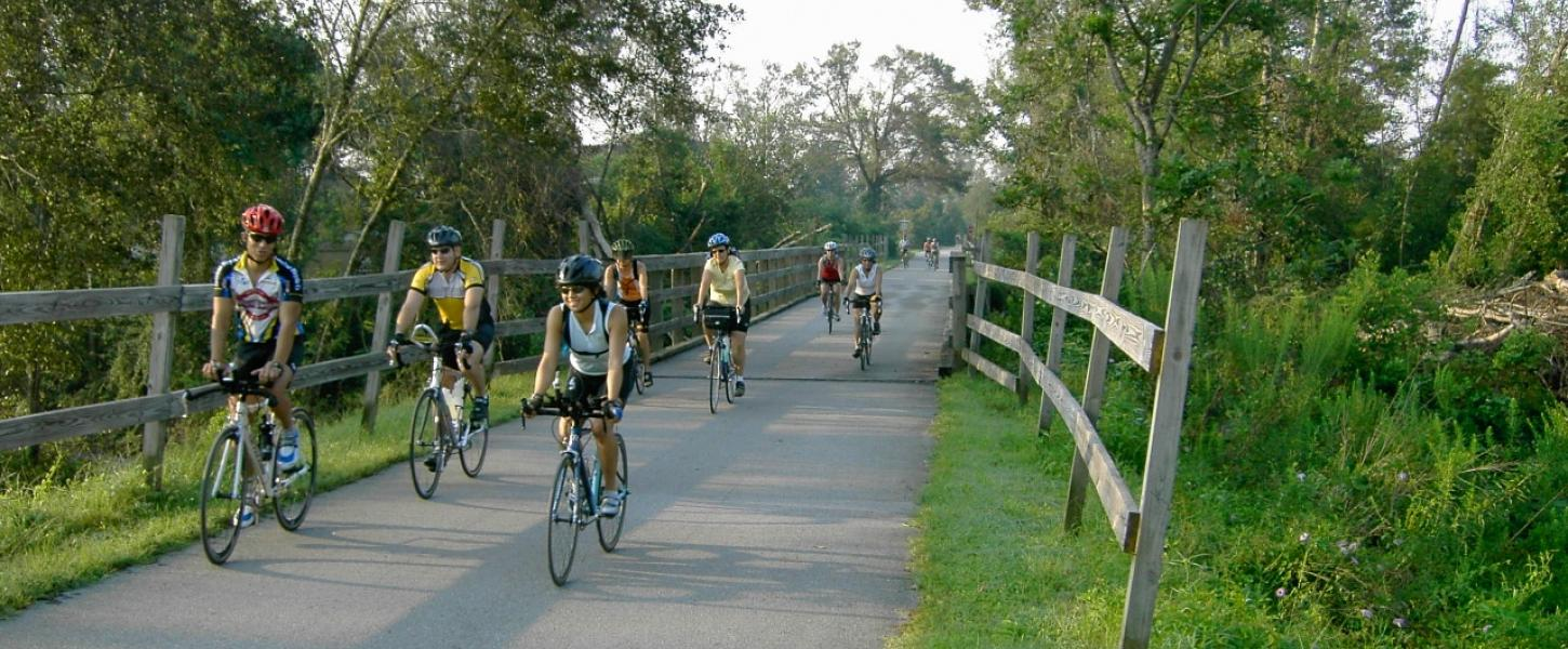 A view of a group biking down the trail