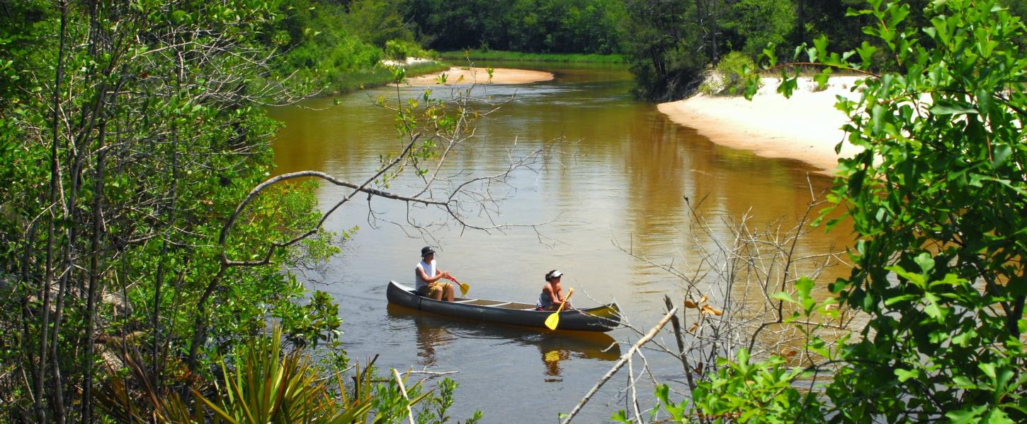A view of visitors canoeing down the Blackwater River.