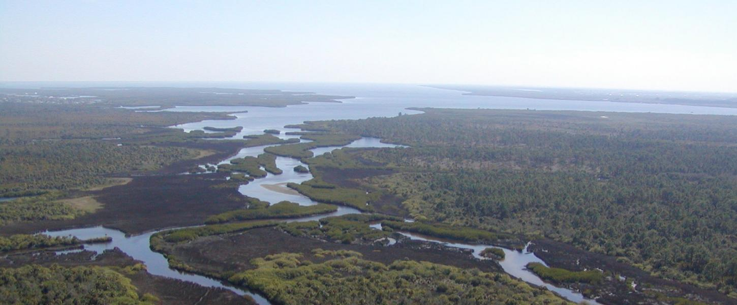 A top down view of the expansive Charlotte Harbor Preserve State Park