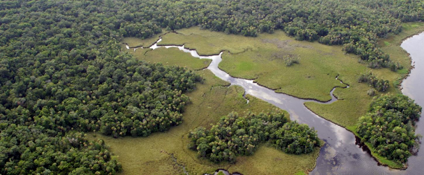 Crystal River Preserve Arial Image
