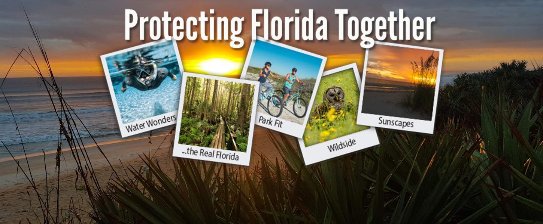 Plein branchement Florida parcs d'État