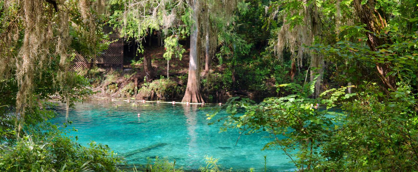 Fanning Springs State Park | Florida State Parks