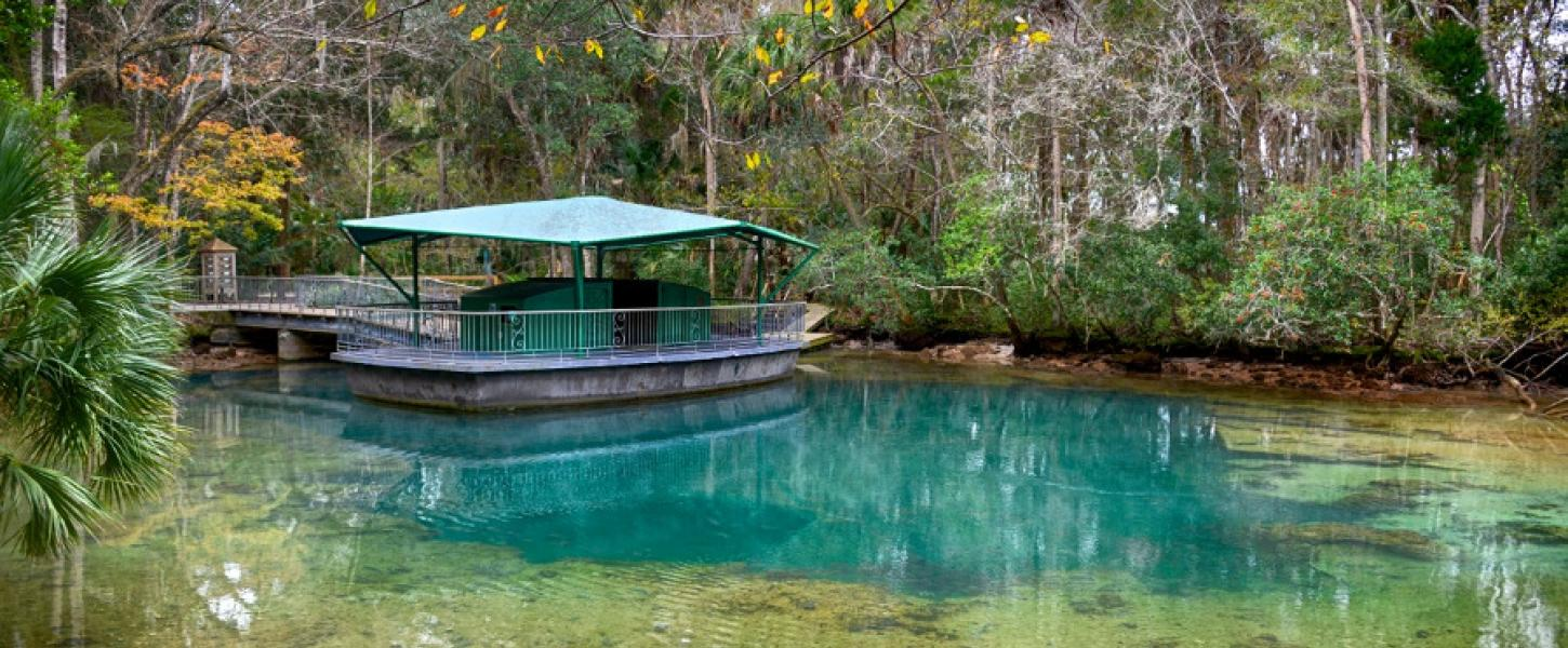 Image of the underwater observatory and first magnitude springs at Homosassa Springs State Park.