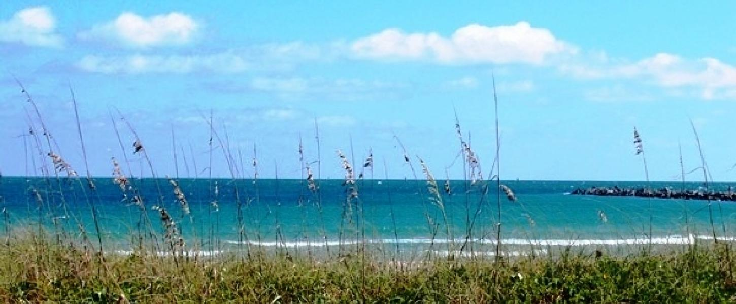Fort Pierce from the Dunes