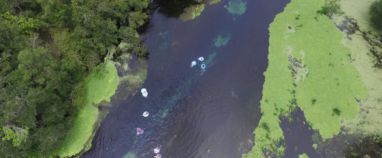 Florida Freshwater Springs Map.Ichetucknee Springs State Park Florida State Parks