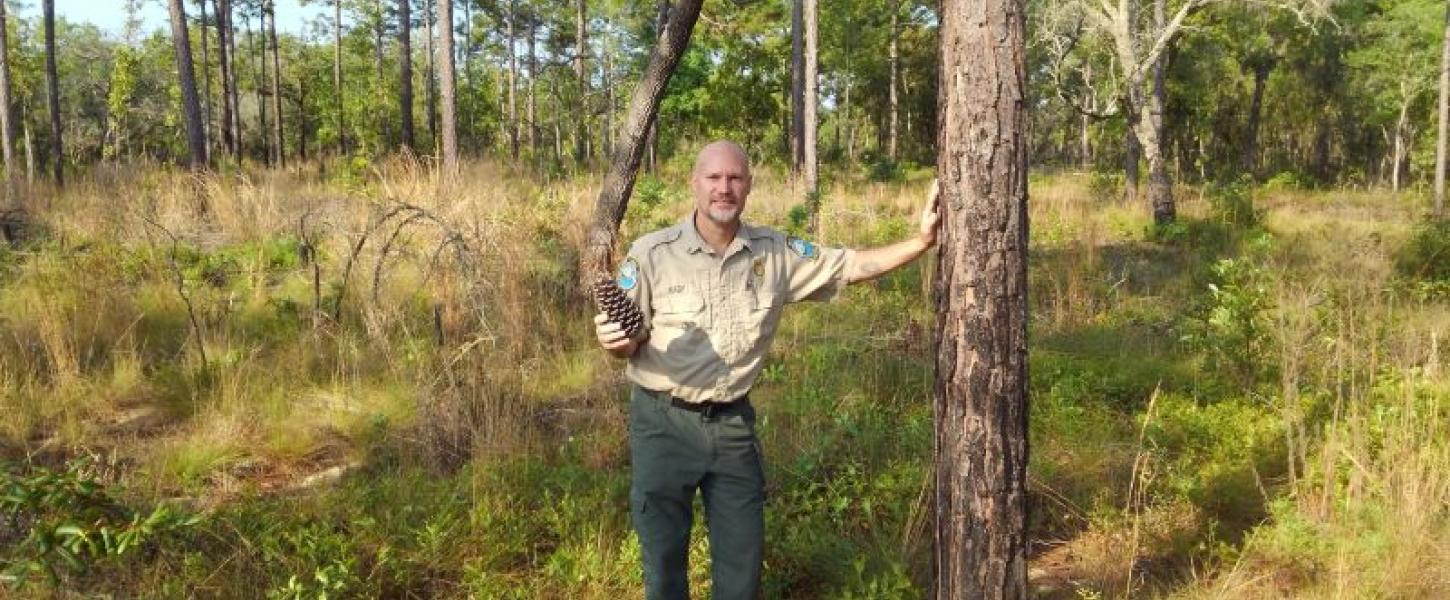 a man in uniform stands in a pine forest holding a pinecone and smiling