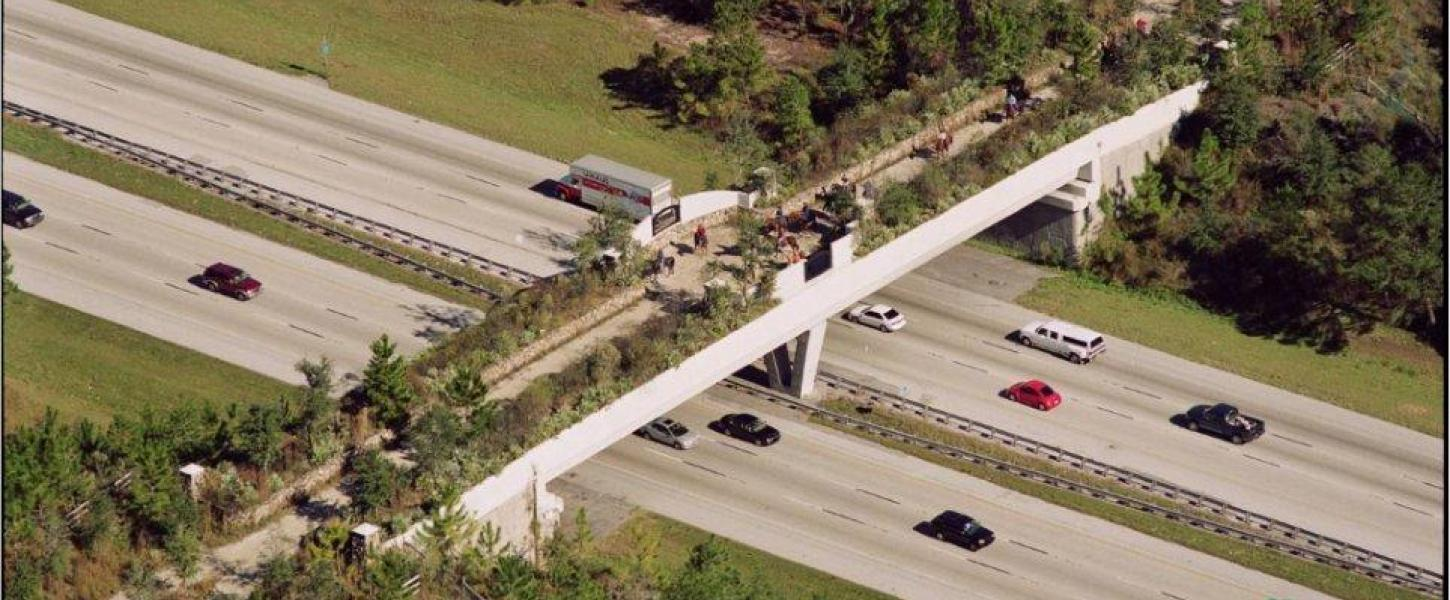 View of Landbridge from I75