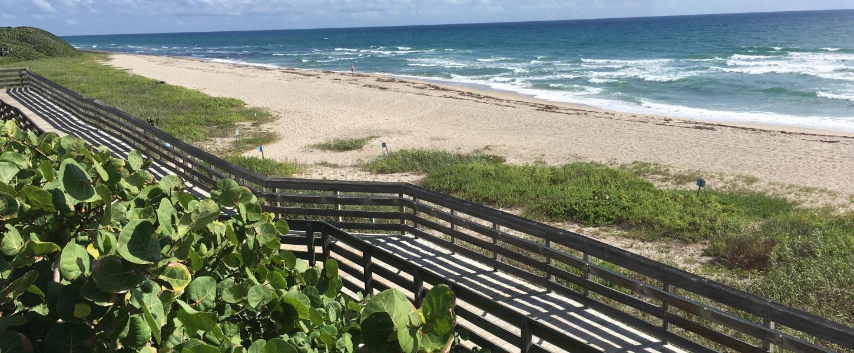 John D  MacArthur Beach State Park | Florida State Parks