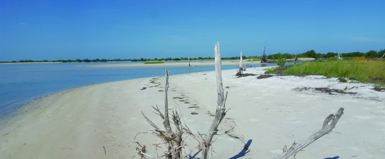 Anclote Key Preserve State Park Florida State Parks