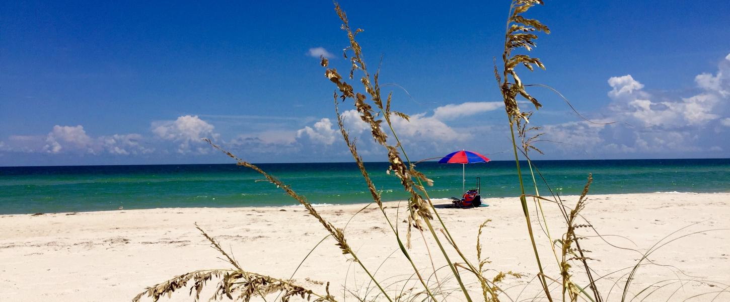 View of Beach and sea oats with vistor under an umbrella