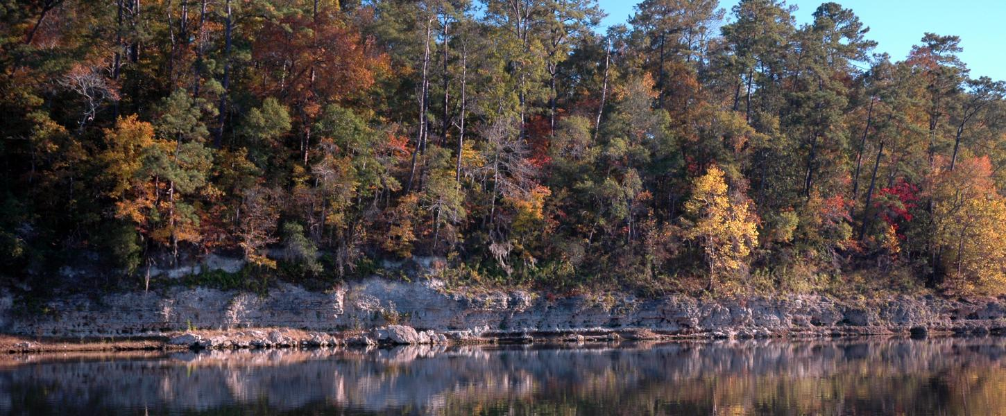 Rock Bluff outcrop along the Apalachicola River