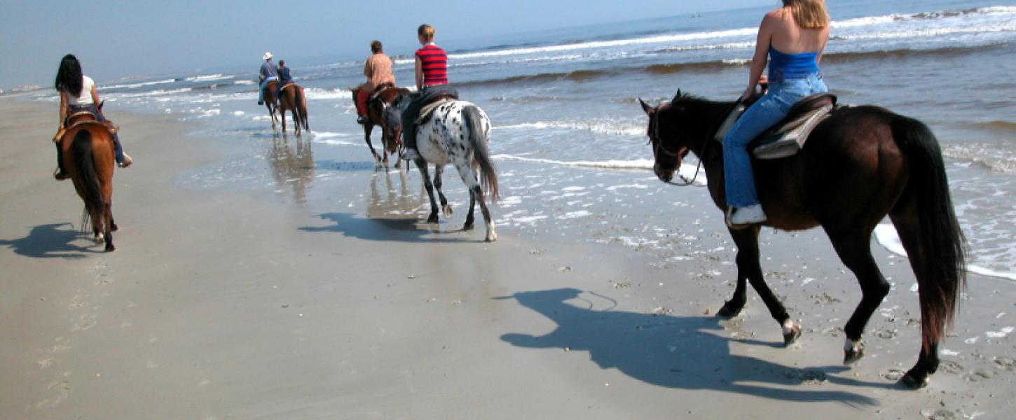 A group of people on horseback rides down a bright and sunny beach in the surf