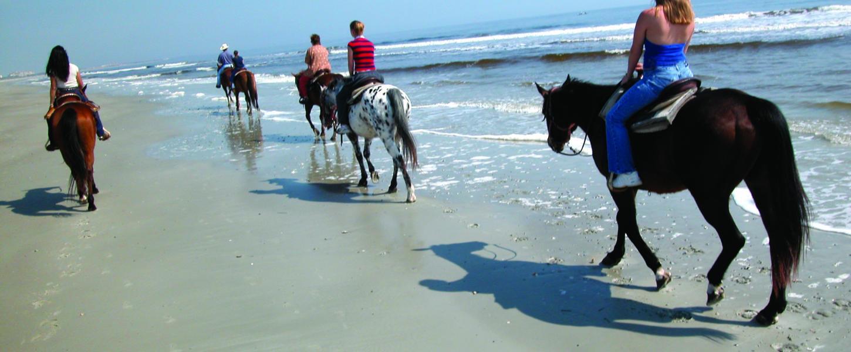 Horseback Riding Tours Amelia Island