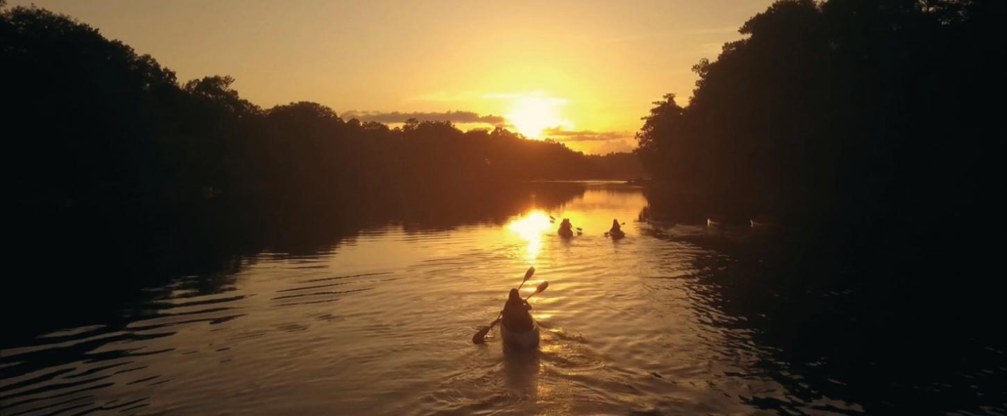 Image of three kayaks/canoes padding the Suwannee River at sunset