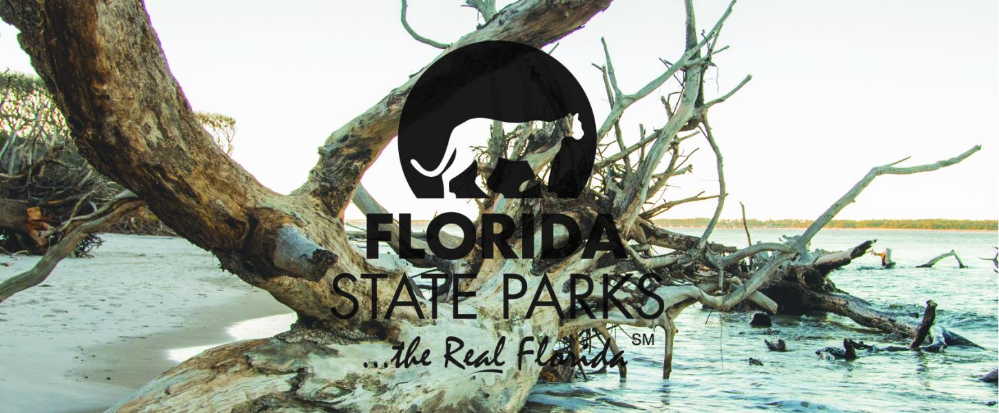 A large drift wood tree with the Florida State Parks logo