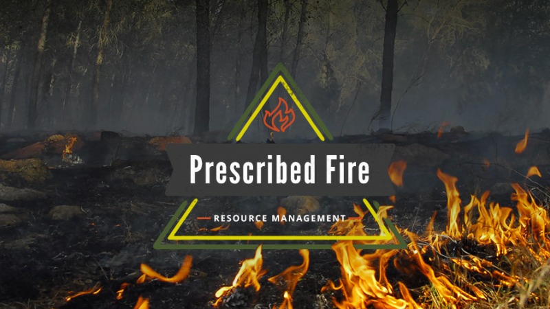 A banner with the prescribed fire logo in the middle, flames can be seen in the background.