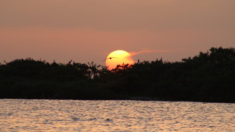 Indian River Lagoon during sunset