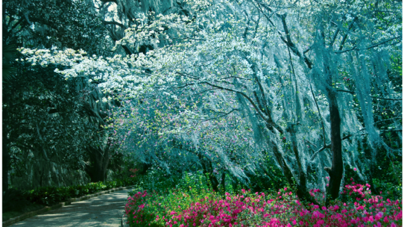 The stamp photograph shows a walkway with pink and white flowers at Maclay Gardens.