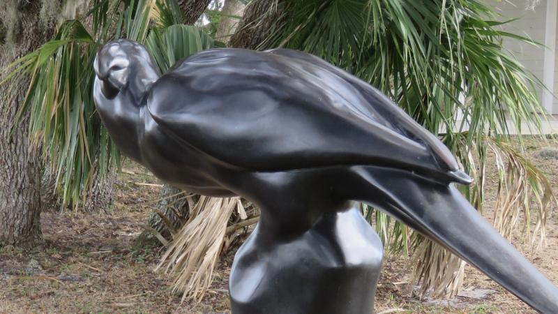 A view of Caroline the Carolina Parakeet statue at the park.