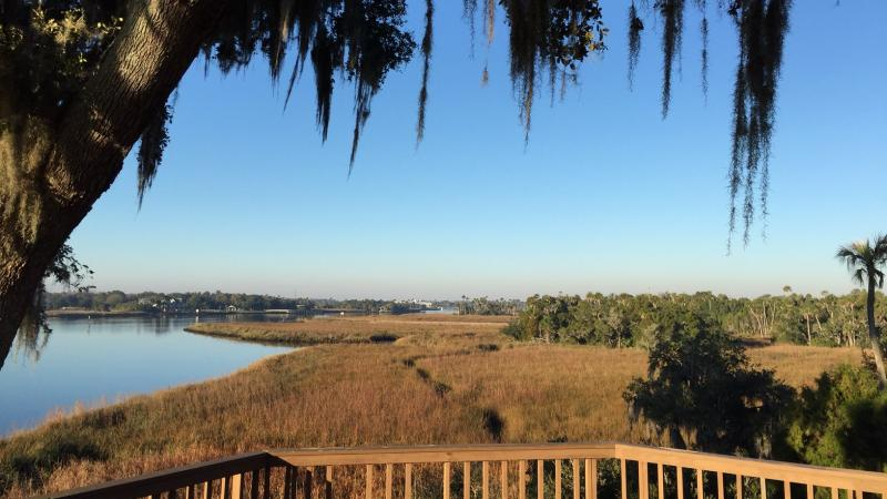Crystal River Archaeological Park View