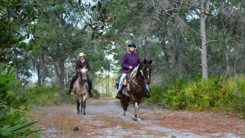 Horseback Riding at Dunns Creek