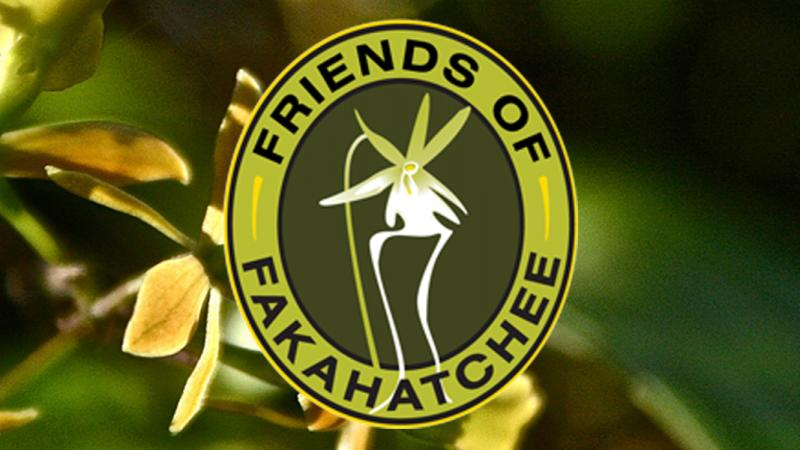 Friends of Fakahatchee Strand Preserve State Park