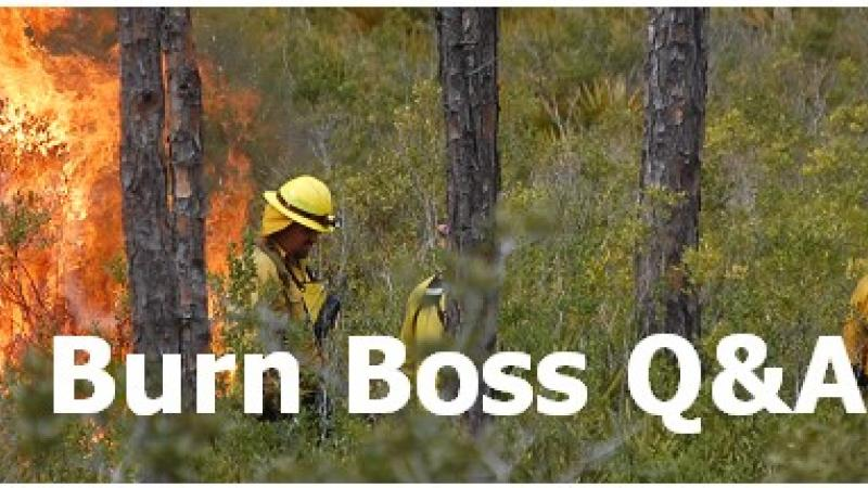Four people work on a prescribed fire.