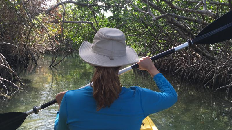 Kayaking in a Mangrove Channel at Lignumvitae Key State Park
