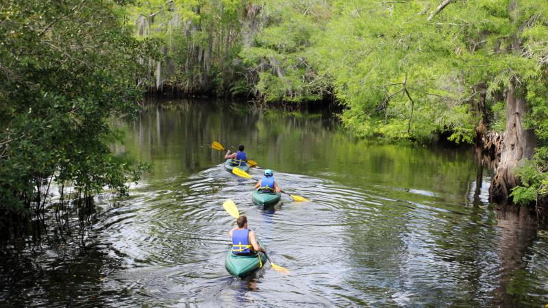 Paddlers at Jonathan Dickenson State Park