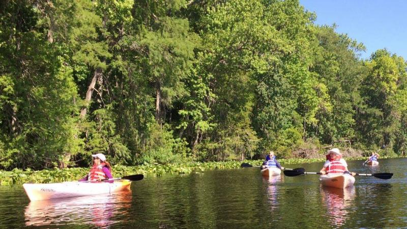 Paddling at Dunns Creek