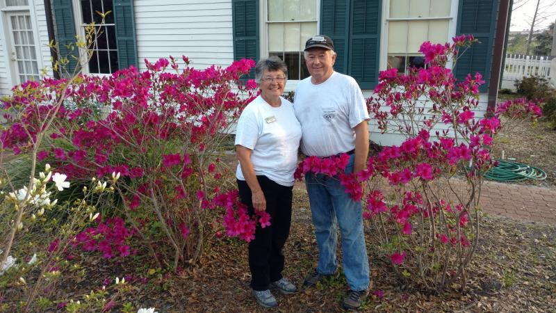 Volunteers Ken and Pattie Fox stand in front of azalea bushes at the Orman House full of bright fuschia blooms.