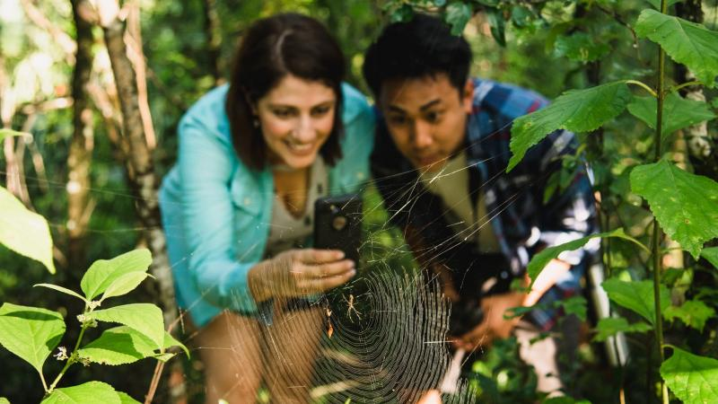 A couple leans in to take a picture of a spider and spider web in the foreground.