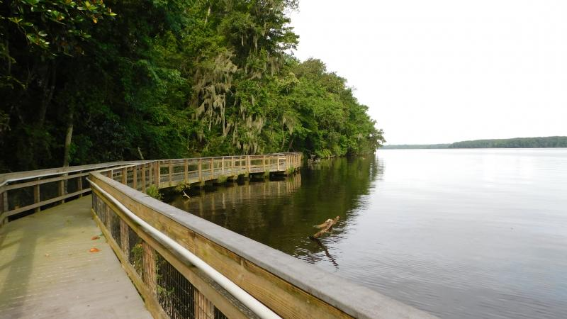 Boardwalk at Lake Talquin State Park