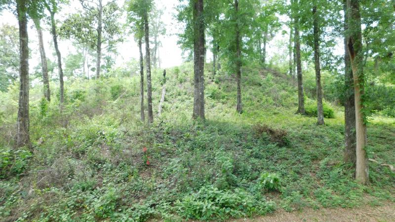 Large Mound at Letchworth-Love Mounds Archaeological State Park